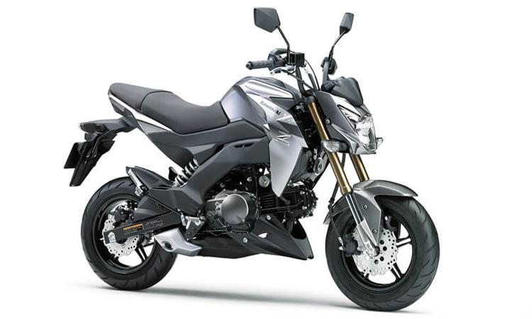 Kawasaki Z125/Z125PRO สีเทา